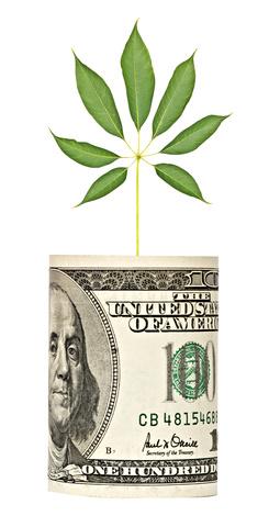 carbon credits faqs